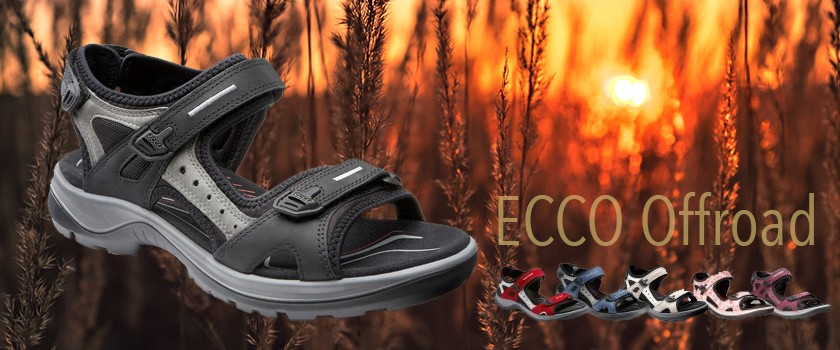 Ecco Online Shop: SALE und günstig kaufen, versandkostenfrei